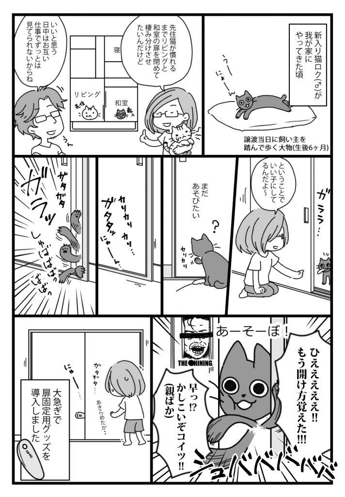 猫が引き戸を開けるのを防止する OPPO スライドロック