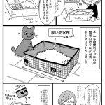 もしもの時のポータブル猫用トイレ