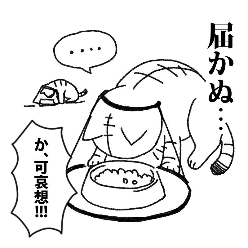 エリザベスカラーでごはんが食べられない猫