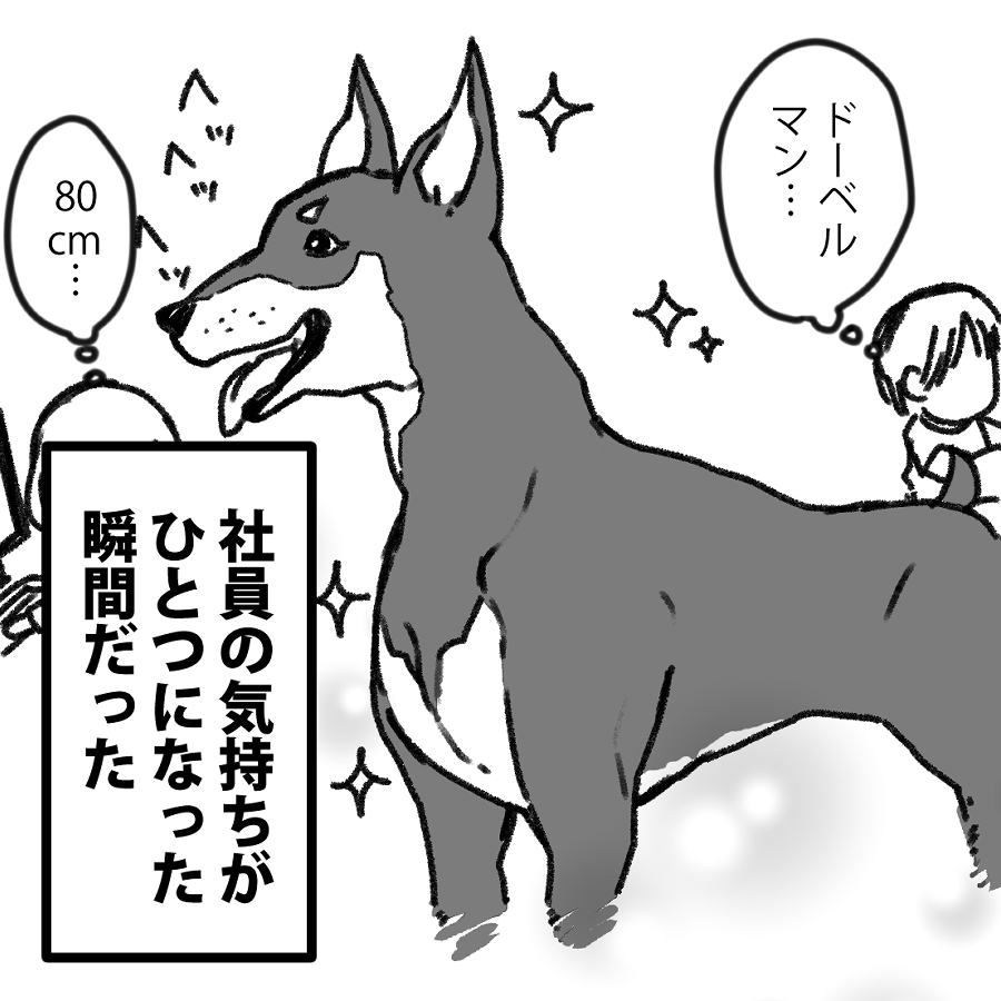 umineccoこぼれ話