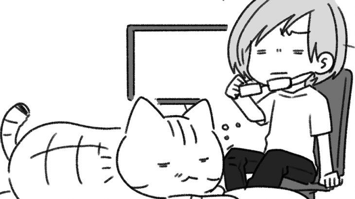 ストレスと猫